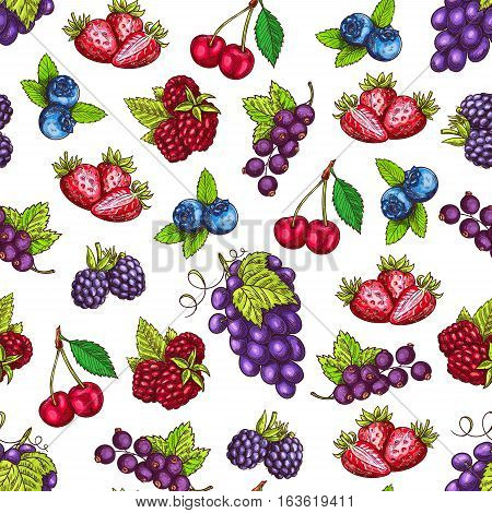Berries pattern. Fruits sketch of fresh strawberry and raspberry, blueberry, blackberry, cherry and blackcurrant and grape bunch. Vector seamless background. Farm and forest berries harvesting