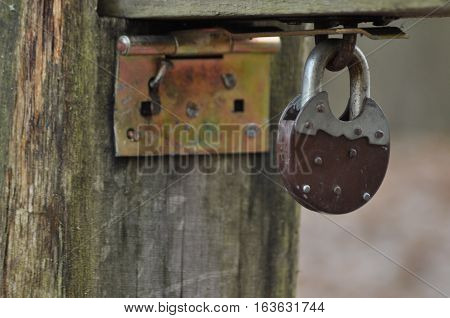 Old closed padlock. Banned. Close barrier in forest.