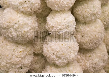 Beautiful created ball of white flower stock photo