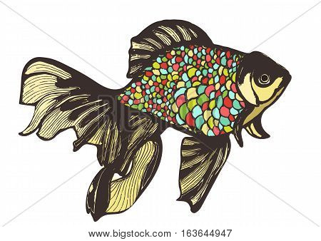 Abstract fish sketch, hand drawing, vector illustration. Decorative fish with motley multicolored scales. Handmade element, tattoo, graphic art, print, vintage image