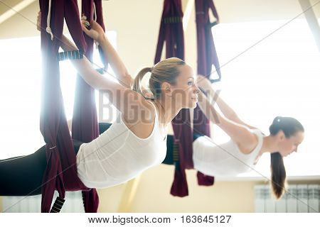 Group of two young beautiful yogi women doing aerial yoga practice in purple hammocks in fitness club. Attractive models working out. Backbend exercise in class. Variation of snake pose, Sarpasana