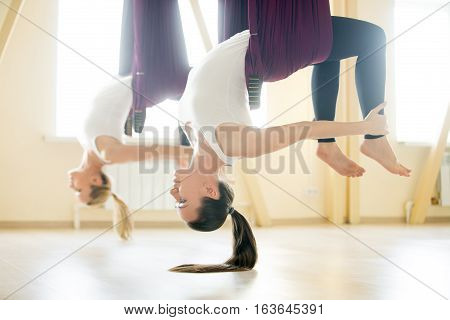 Two young yogi women doing aerial yoga practice in purple hammocks in fitness club. Beautiful happy females working out, performing antigravity yoga in class. Variation of Chakrasana, Bridge pose