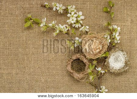 Stylized birds nest. The branches of the cherry blossoms. Background beige burlap