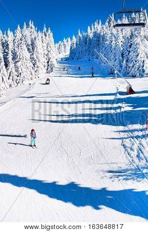 Ski resort, ski slope, ski lift, skiers on the slope among white snow pine trees forest