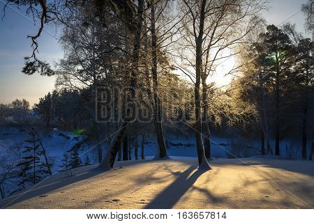 Winter morning. Snowy shore of the River Separate ( tributary of the Ob river ) in Novosibirsk oblast Siberia Russia