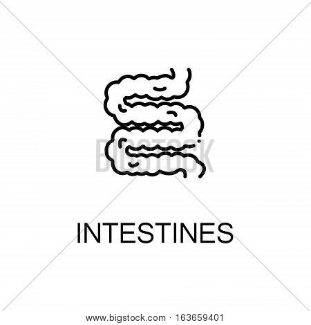 Intestines flat icon. Single high quality outline symbol of human body for web design or mobile app. Thin line signs of intestines for design logo, visit card, etc. Outline pictogram of intestines