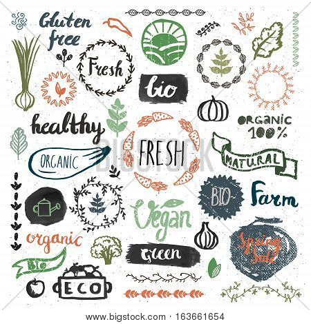 Set of hand drawn bio, organic, eco product logos, badges, tags. Handwritten healthy eat logotypes set. Vegan, natural food and drink signs. Farm market, store icons collection.