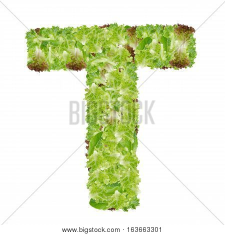 Letter T alphabet with hydroponics leaf ABC concept type as logo isolated on white background