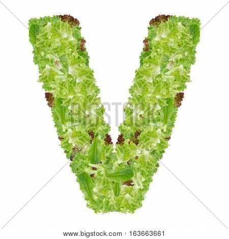 Letter V alphabet with hydroponics leaf ABC concept type as logo isolated on white background