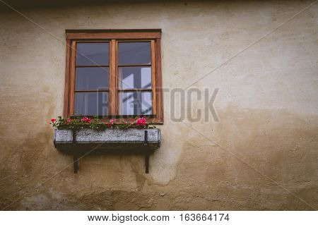 Flower planter in front of a window