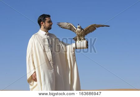 Dubai, UAE, December 3rd, 2016: Tunisian man with a seaker falcon in a desert at sunrise