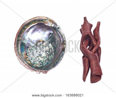 Bright polished rainbow abalone shell isolated on white background with wooden cobra stand