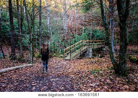 GIRL WALKING IN THE WOODS WITH FOOT BRIDGE