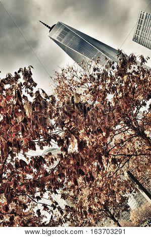 Autumn trees in Ground Zero New York City - HDR image