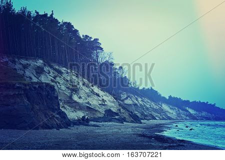 Sea cliff and forest. Dark cold winter over coast.