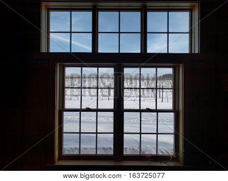 Scenic Cold Winter Snow Vinyard Window View
