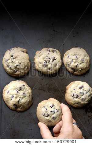 cookies of a baking sheet with a hand snatching one!