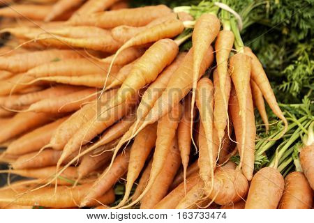 Bunch of carrots at a farmers market