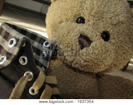 Pint-Sized Teddy & Shoes