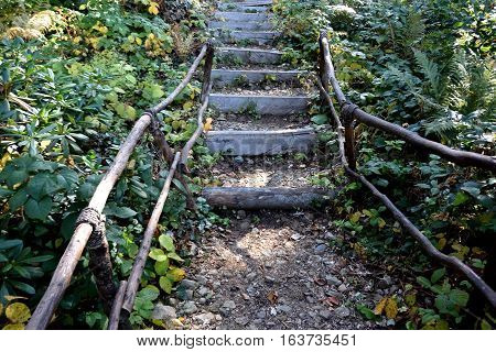 Stairway to tourists in a mountain forest Sochi Russia