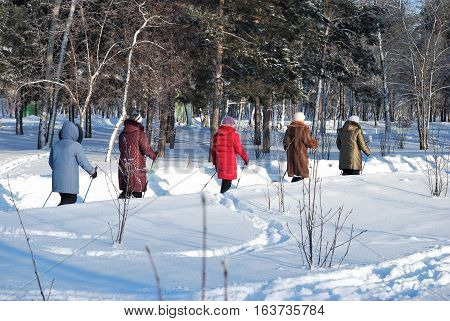 OMSK RUSSIA - JANUARY 2016: Nordic walking in the winter park in Siberia