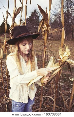 Young woman checking ear of corn in corn field