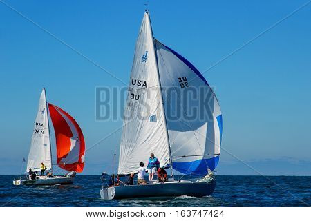 Sailboats During Regatta In Gulf Of Mexico