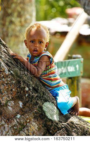 Lavena, Fiji - November 27: Unidentified Boy Sits On A Plam Tree On November 27, 2013 In Lavena Vill