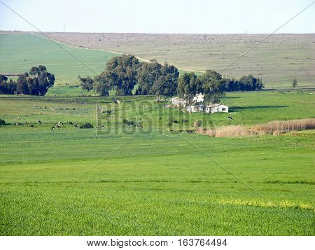 Farming Area, Western Cape South Africa 12sae