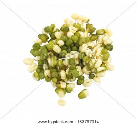 Sprouted Green Mung Beans On White Background