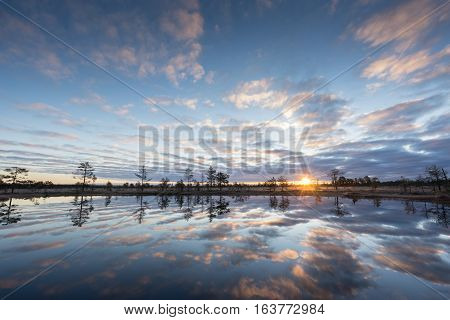Sunrise in the bog. Icy cold marsh. Frosty ground. Swamp lake and nature. Freeze temperatures in moor. Muskeg natural environment. Beautiful trees sky and cloud reflection in water in the fen. poster