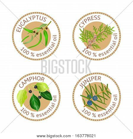 Set of 100 essential oils labels. Eucalyptus, cypress, camphor, juniper symbols. Logo collection. Vector illustration. Brown stamps, flat style. For stickers, price tags labels advertising banners