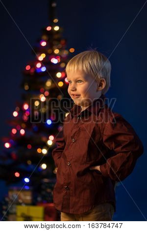 Multicolor spruce with decorations and lights bokeh. Child and gifts under the multicolour Christmas tree. Little boy and adornment on the trees