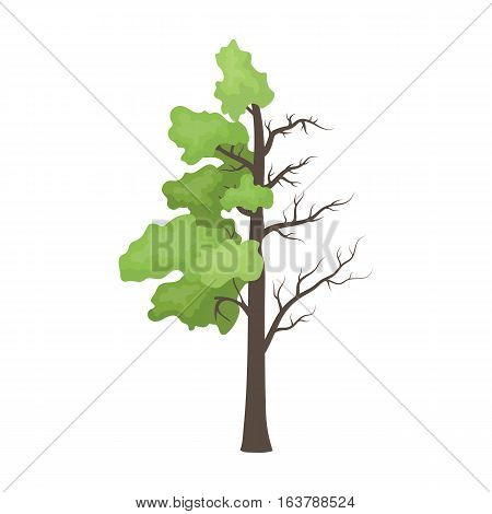 Tree half full of green leaf and half dry icon in cartoon design isolated on white background. Bio and ecology symbol stock vector illustration.