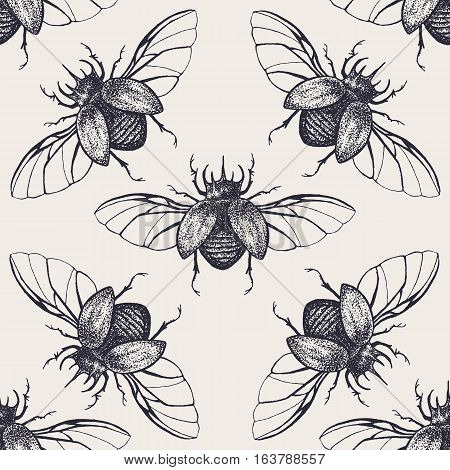 Beetles seamless pattern. Vintage hand drawn insects with spreaded wings. Inked scarab