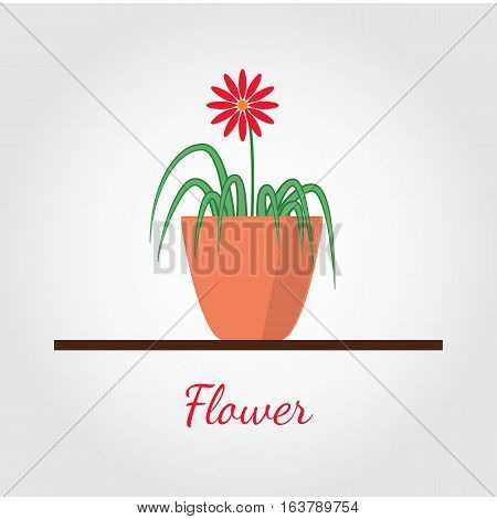 Houseplant standing on table vector icon. Illustration in flat design, isolated on modern stylish color background. Natural plant with green leaves.
