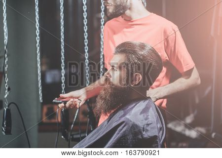 Handsome Bearded Man Has Hairstyle