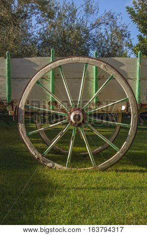Wooden cart with iron wheels in a field.Italy,Apulia.