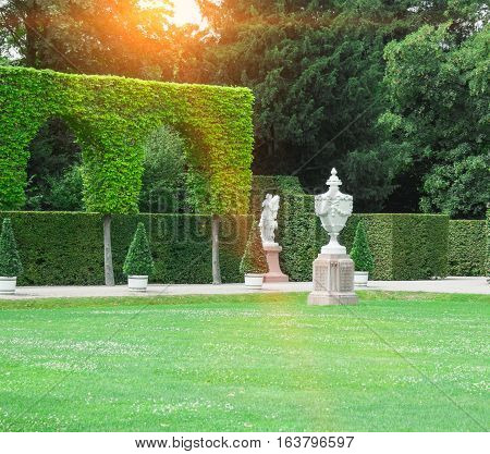 Beautiful garden with green hedges with trees.
