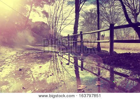 Autumn rural roadfence and trees.Puddle after rain in autumn.Vintage styleretro effect