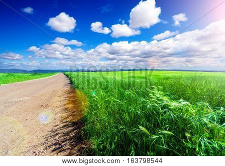 Green grassblue sky and empty road sunset.Adventure ramble concept.Nature sunset scenery and road