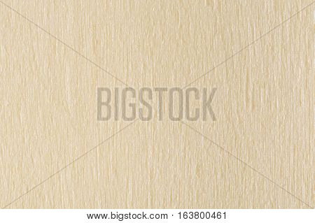 Wood Texture Background White Wooden Pattern Natural Light Grained Timber Surface Macro