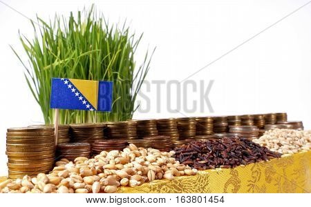 Bosnia And Herzegovina Flag Waving With Stack Of Money Coins And Piles Of Wheat And Rice Seeds