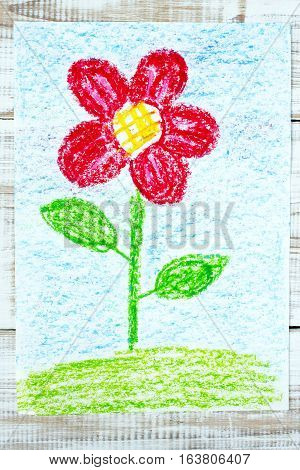 colorful drawing - beautiful red flower, springtime
