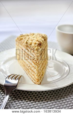 Piece of layer cake with custard and walnuts on a plate. Selective focus