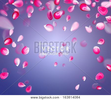 Falling isolated pink petals background. Vector illustration