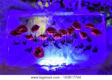 Red poppies and butterflies frozen into a block of ice