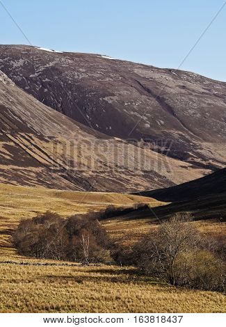 Scottish Highlands Near Roy Bridge