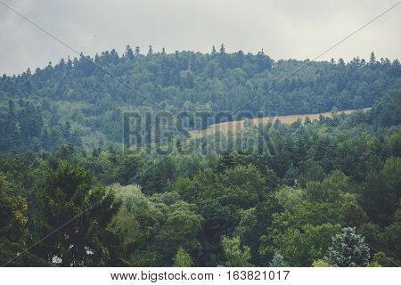 View of mountain forest landscape under sunlight in the middle of the summer with heavy blue sky as a background. Green wood mountain forest in clouds scenery.