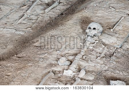 Grave Burial Site Of People